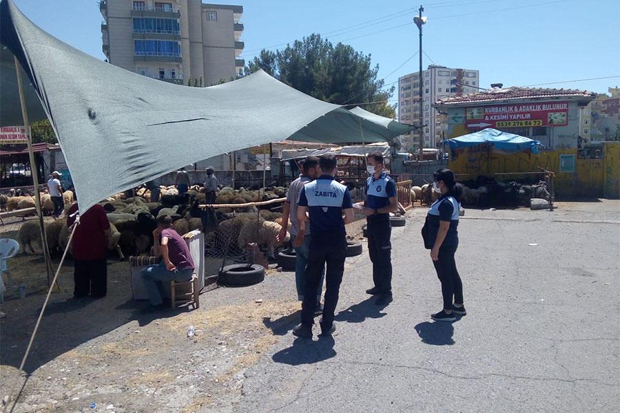 diyarbakirda-kurban-satis-yerlerinde-siki-denetim
