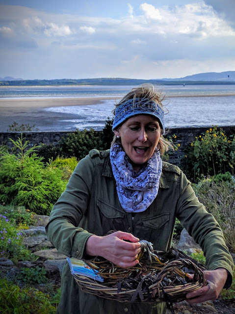 Dr. Prannie Rhatigan explains the different types of seaweed along the coast of County Sligo, Ireland