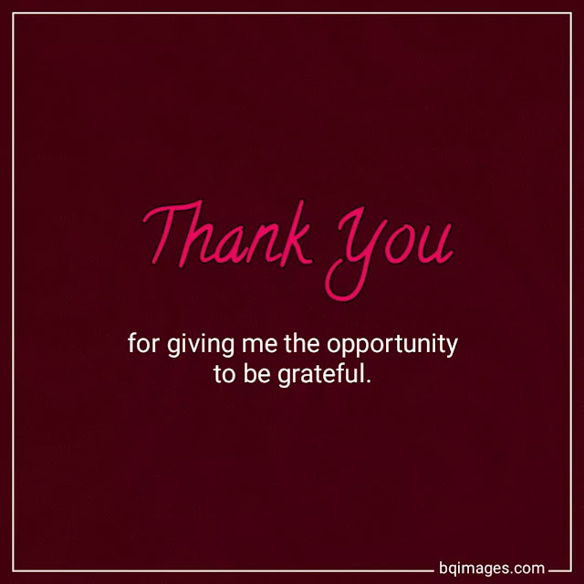 thank you images with quotes