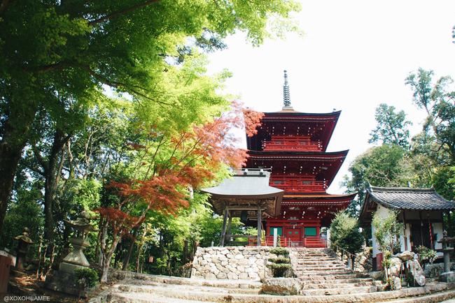 兵庫県丹波市柏原町観光 八幡宮 八幡神社 三重塔