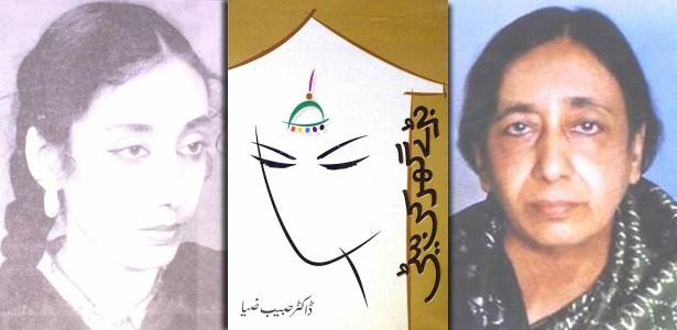 bade-ghar-ki-beti-habeeb-ziya