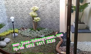 http://www.jasa-tukangtaman.com/2017/05/tukang-taman-ciapus.html
