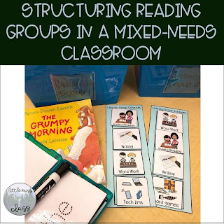 Structuring Reading Groups in a Classroom Mix-Needs Classroom