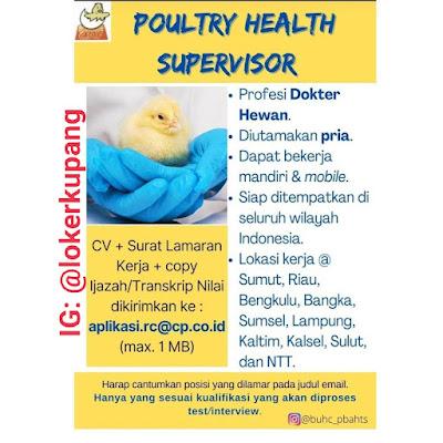 Lowongan Kerja Charoen Pokphand sebagai Poultry Health Supervisor