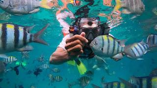 Bermain dengan Ikan-ikan Cantik di Pulau Rubiah