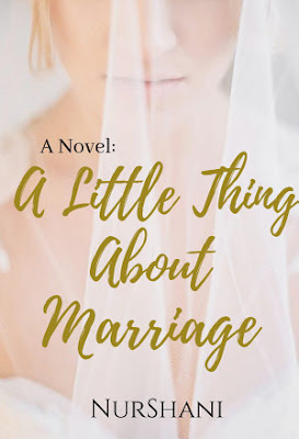 A Little Thing About Marriage by Nurshani Pdf