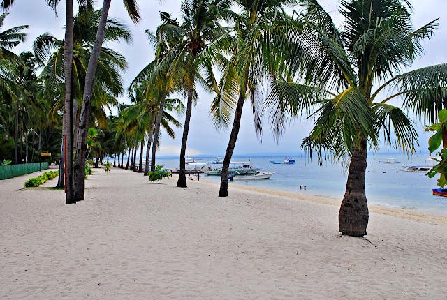 the long white sandy shore of Malapascua Island