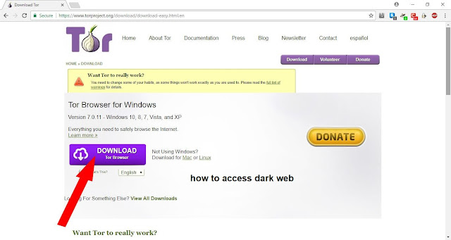 how to access dark web