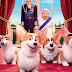 Corgi - Top Dog: filme tem estreia adiada no Brasil