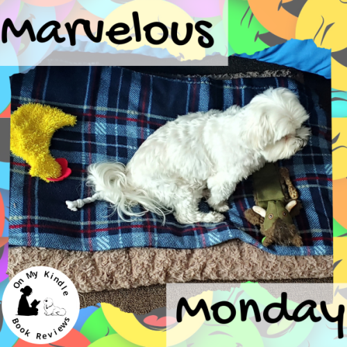 Marvelous Monday with Lexi: August 5th Edition! Photo of Lexi by Michael Johnson