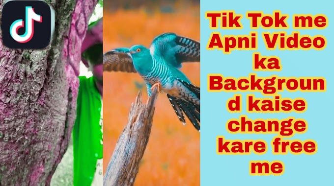 Tik Tok Video Background Colour Changer app