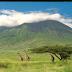 Танзания ждет 1,5 миллиона туристов