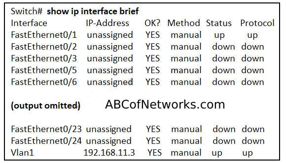 Introduction to Networking chapter 2 version 6 answers