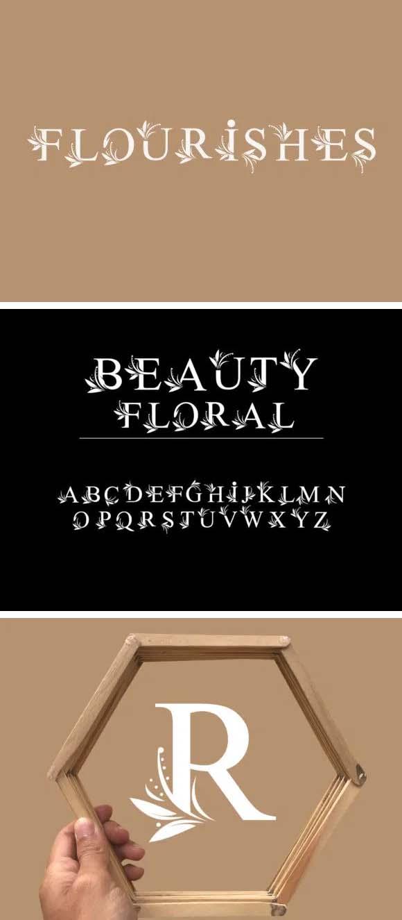 Flourishes Premium Font
