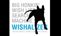 Wishalizer