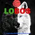 La liga de Chihuahua y sus Chihuahenses