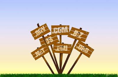 5 Keuntungan Top Level Domain untuk Blog Pribadi yang Terpenting