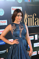 Shriya Saran in Beautiful Transparent Dark Gown IIFA Utsavam Awards 2017 016.JPG
