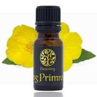 10ml Evening Primrose Oil 100% Murni Minyak Carrier Oil
