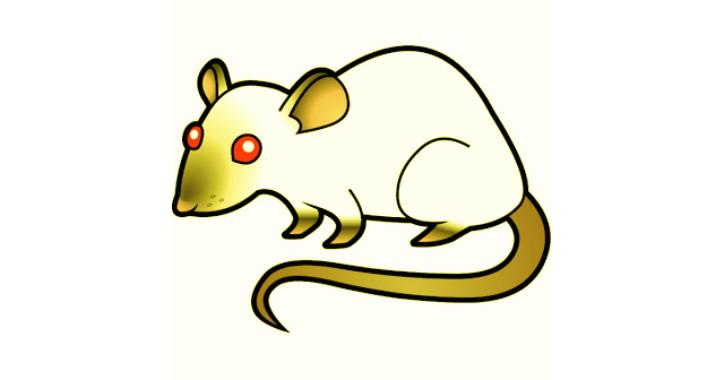 RedPeanut : Small RAT Developed in .Net Core 2 & Its Agent in .Net 3.5 / 4.0