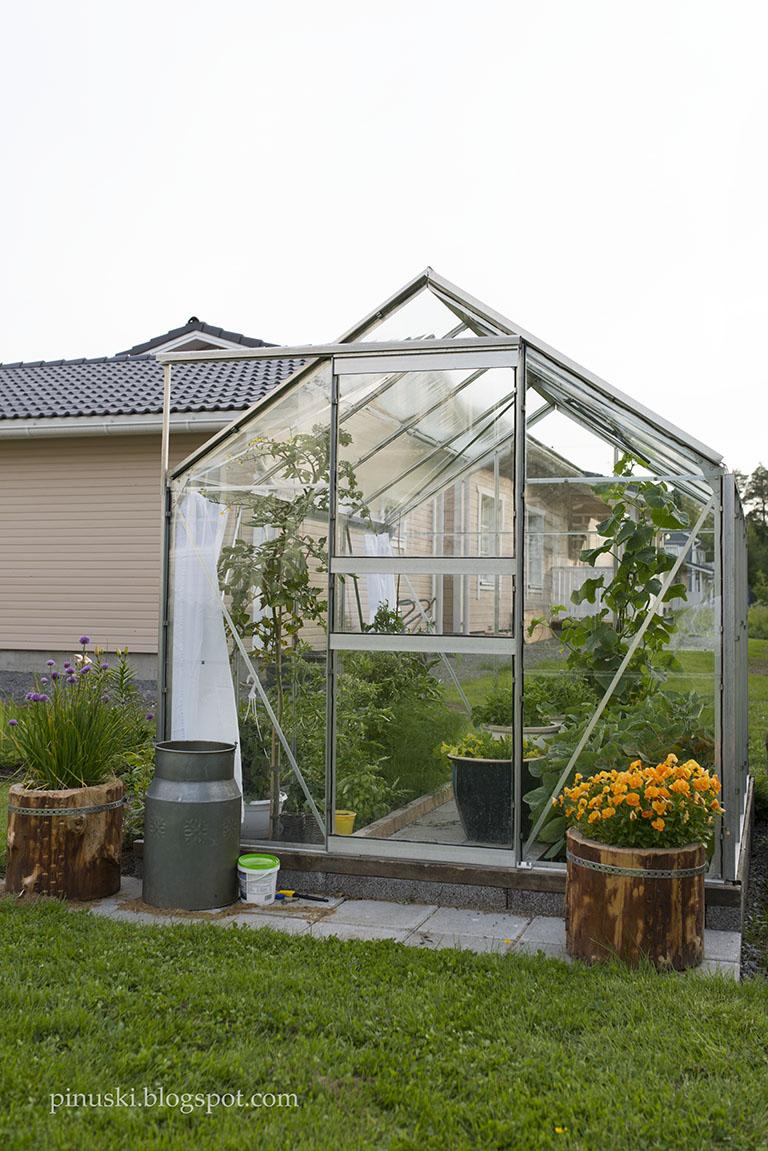 Kasvihuonekasvatus