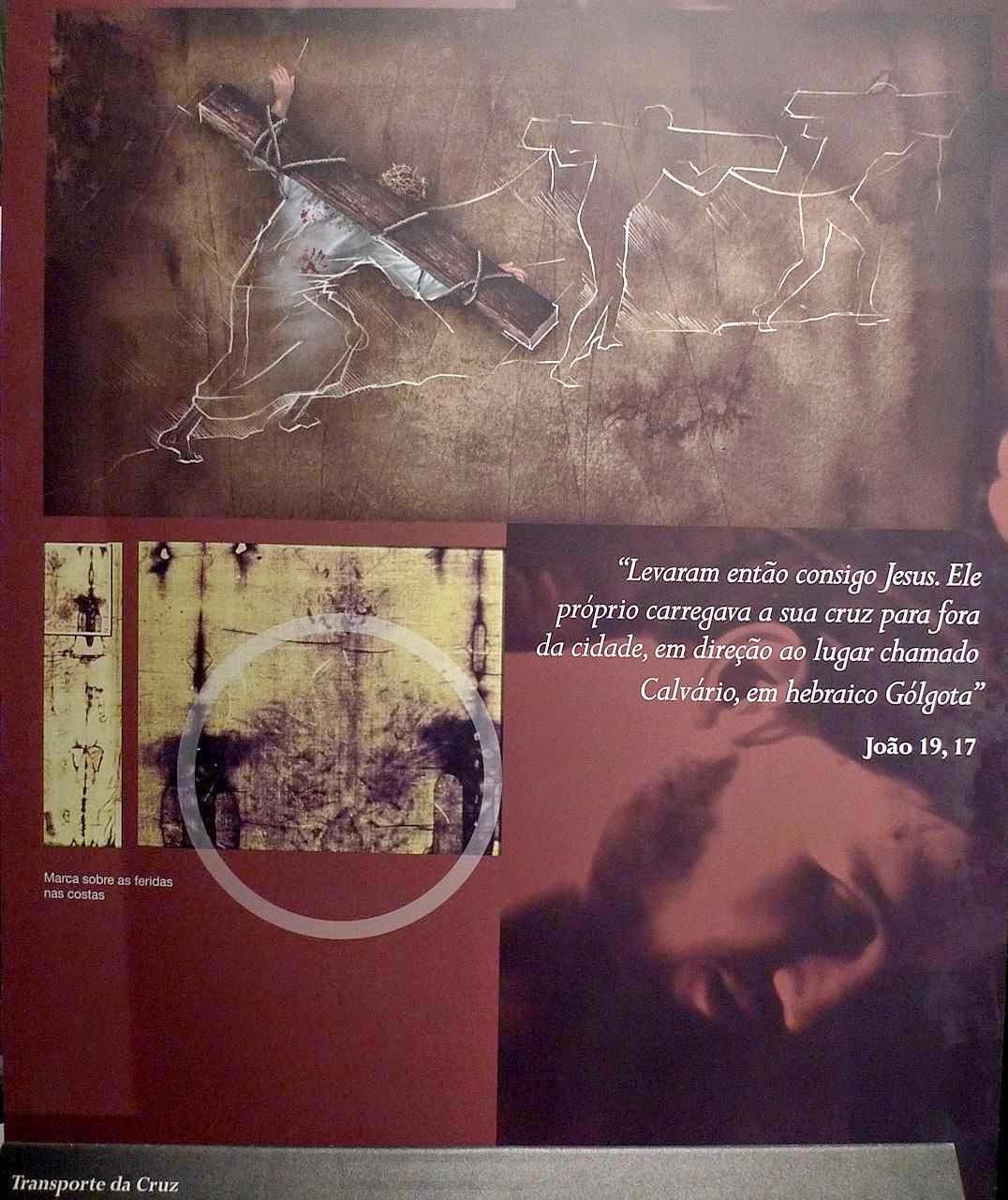 O Homem do Sudário: chagas provocadas pelo transporte da Cruz