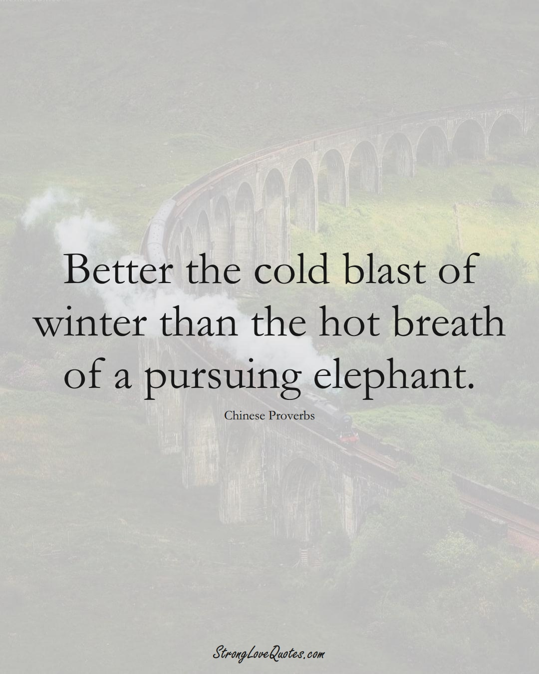 Better the cold blast of winter than the hot breath of a pursuing elephant. (Chinese Sayings);  #AsianSayings