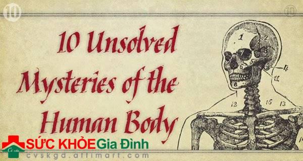 Những bí mật hóc búa nhất về cơ thể người