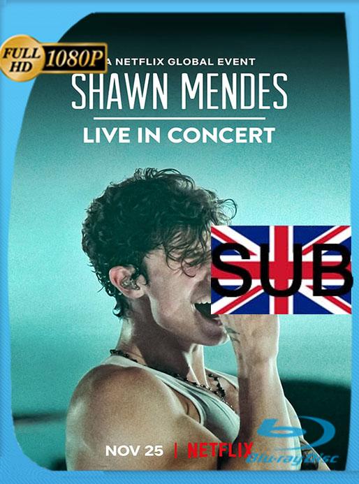 Shawn Mendes: Concierto en vivo (2020) 1080p WEB-DL Subtitulado  [GoogleDrive] [tomyly]