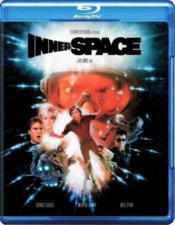 Innerspace 1987 Dual Audio Hindi 480p BRRip 350mb