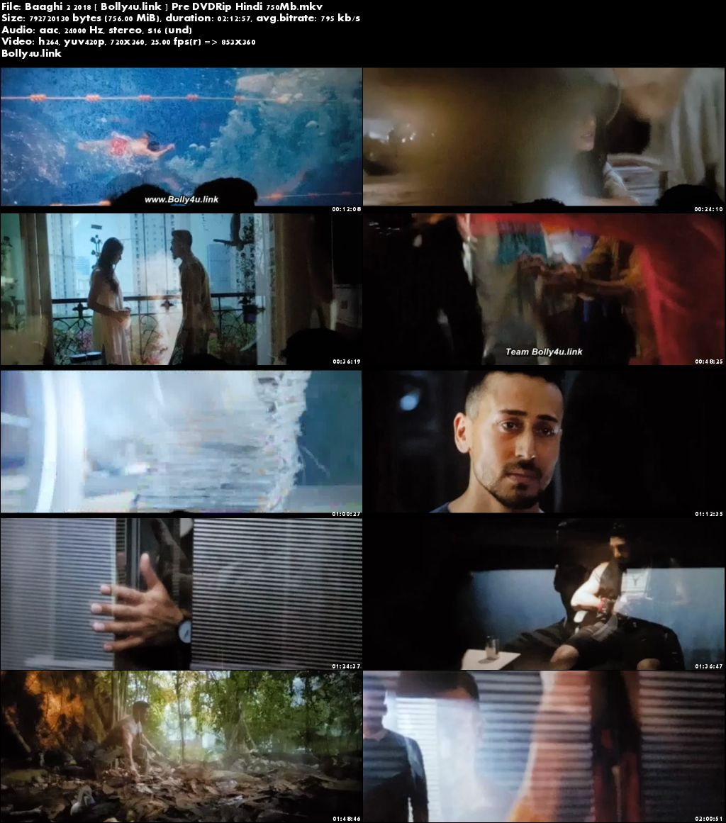 Baaghi 2 2018 Pre DVDRip 350Mb Full Hindi Movie Download 480p