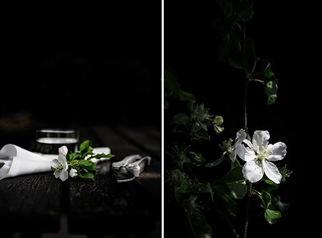 Apfelblüten-Fotografie-Lowkey