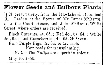 Wellington Independent, 5 June 1850. Courtesy of Papers Past.