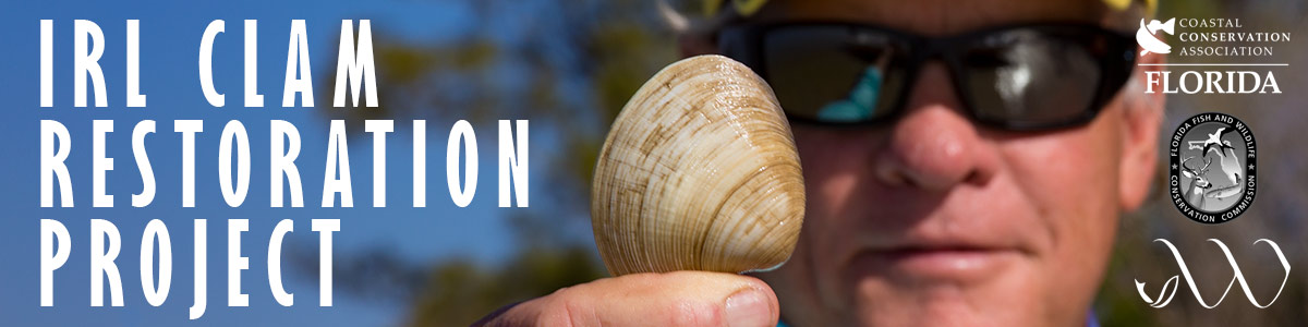 Indian River Lagoon Clam Restoration Project