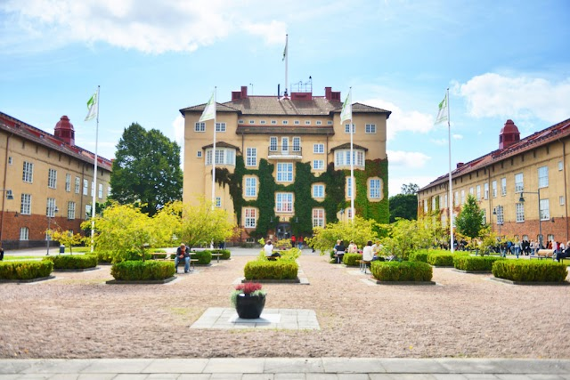 The Kristianstad University Scholarship In Sweden