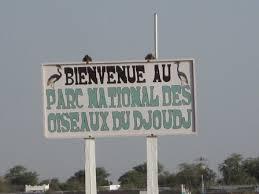 LE PARC NATIONAL DES OISEAUX : Parc, animaux, visite, tourisme, sauvage, oiseaux, LEUKSENEGAL, Dakar, Sénégal, Afrique