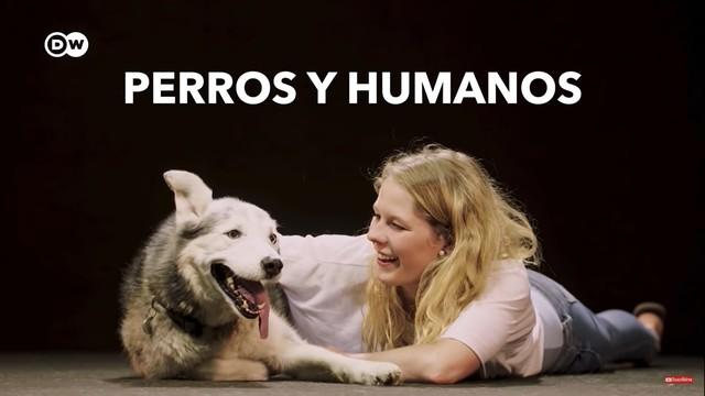 Perros y humanos