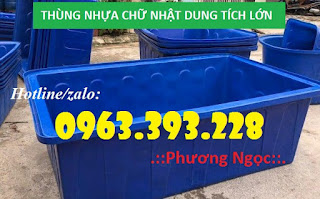 Thùng nhựa chữ nhật, thùng nhựa đựng hóa chất 00aea052e0aa07f45ebb