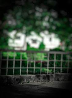 Dark Green CB Background Free Stock Image