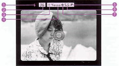 Contax 167 MT, Viewfinder readout