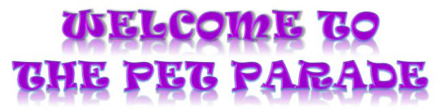 Spring pet parade banner ©BionicBasil® The Pet Parade