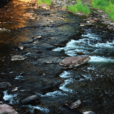 Shady and dappled shallow flowing stream