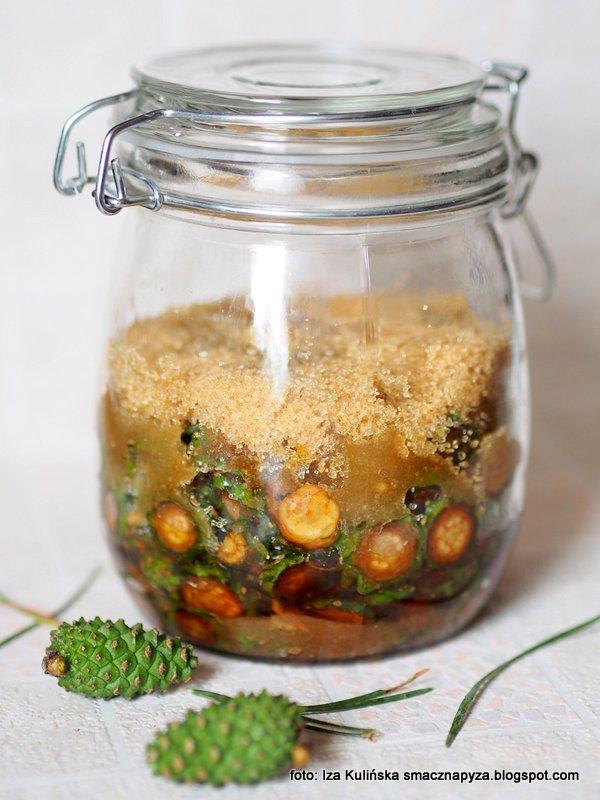 syrop sosnowy, na zdrowie, szyszki sosnowe, zielone szyszki, lesne lekarstwo, domowa apteczka
