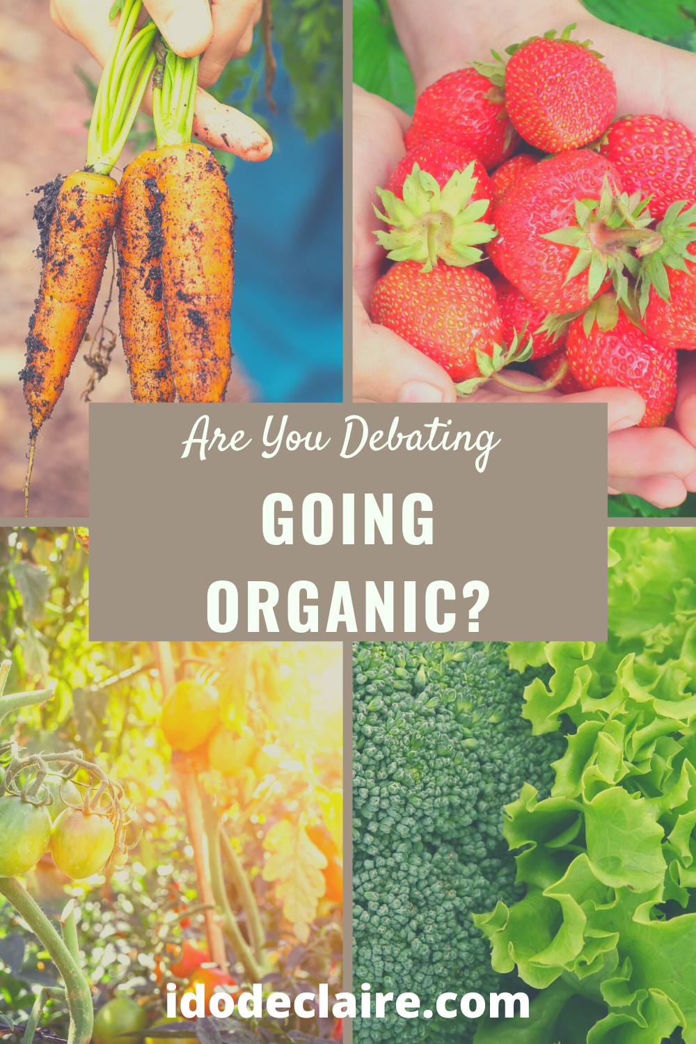 Are You Debating Going Organic?