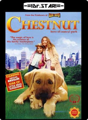 Chestnut : Hero of Central Park (2004) 480p 250MB HDTVRip Hindi Dubbed Dual Audio [Hindi – English] MKV
