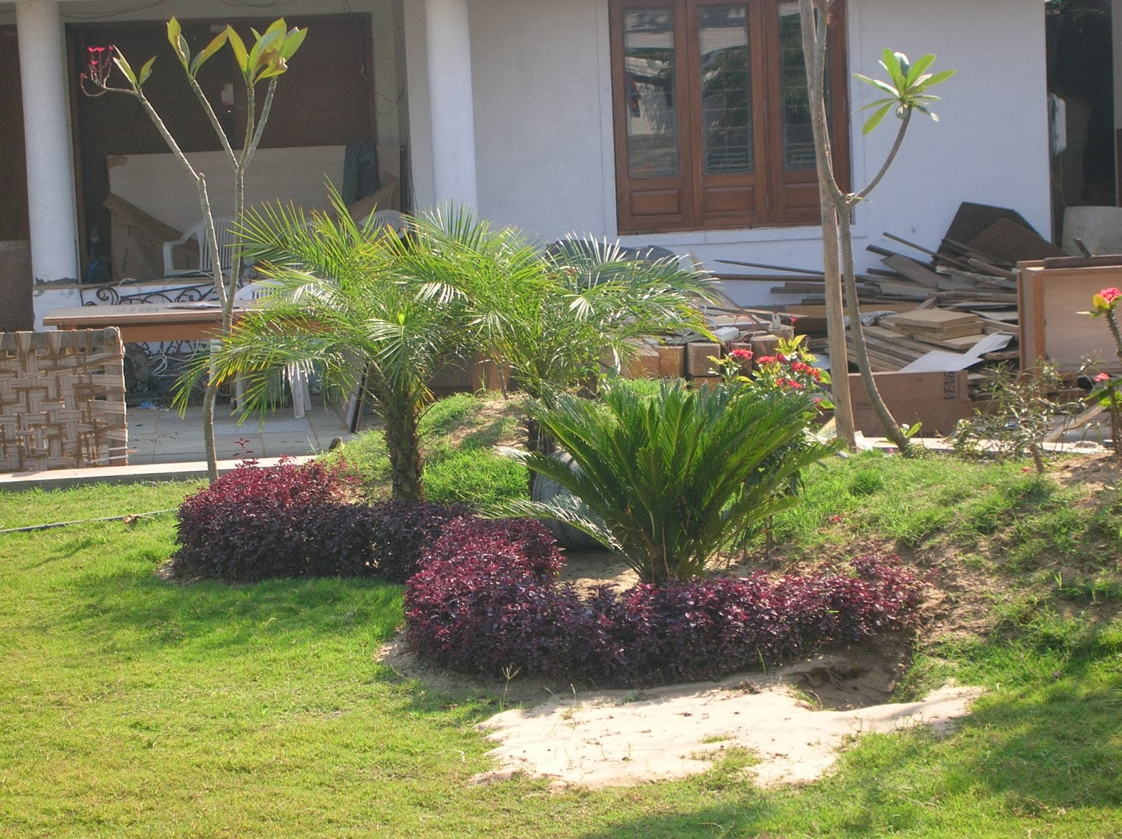 outdoor garden design ahmedabad