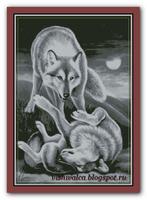 Играющие волки