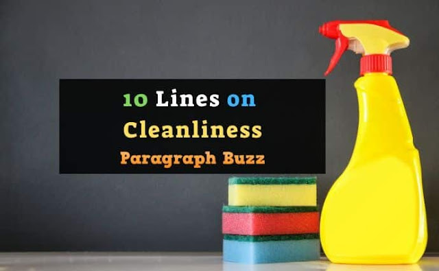 10 Lines on Cleanliness in English