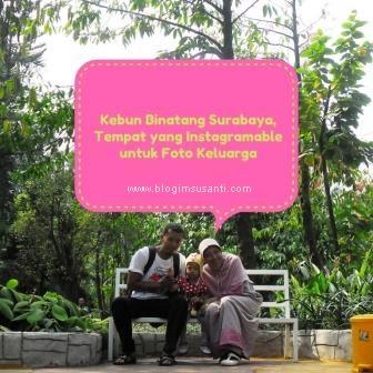 Kebun Binatang Surabaya Tempat yang Instagramable untuk Foto Keluarga