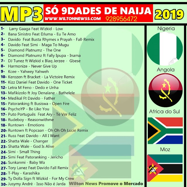Download Naija 2019 (30 Músicas)